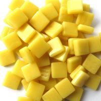 031 Corn Yellow: 100g