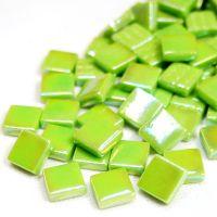 011p Iridised New Green: 100g