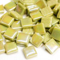 044p Iridised Light Olive: 100g