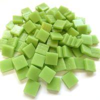 003 Matte Mint Green: 100g