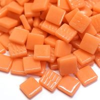 103 Apricot: 100g