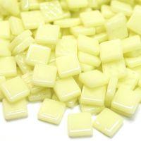 026 Yellow Pollen