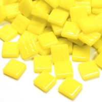 028 Acid Yellow: 100g