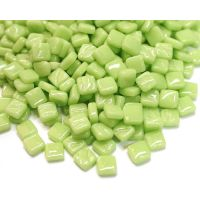 003 Mint Green: 50g
