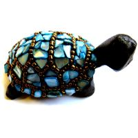Turtle Baby: Blue