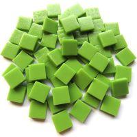 011 Matte New Green: 100g