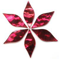 Small Petals: AR12 Wine Wavy