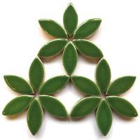 H141 Eucalyptus 25mm Petal: 50g