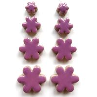 Pretty Purple Flowers H6
