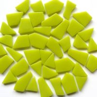029 Yellow Green