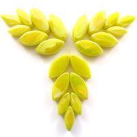 028p Iridised Yellow Petals: 50g
