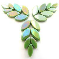 011p Iridised New Green Petals: 50g