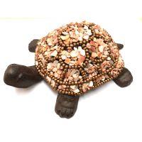 Turtle: Peach