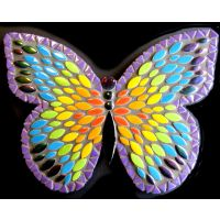 25cm Admiral Butterfly: Rainbow