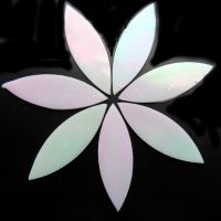 Large Petals: MY01 Shining White