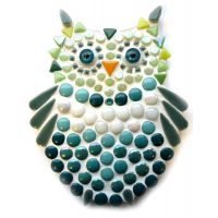 New Owlet: Teal